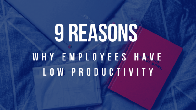 9 Reasons why your employees have low productivity