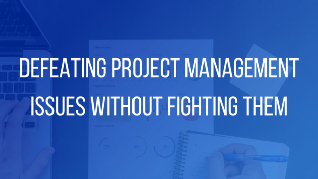 Defeating Project Management Issues without Fighting Them