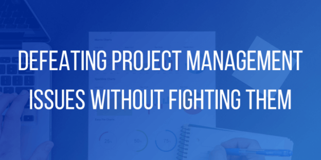 Project Management Issues