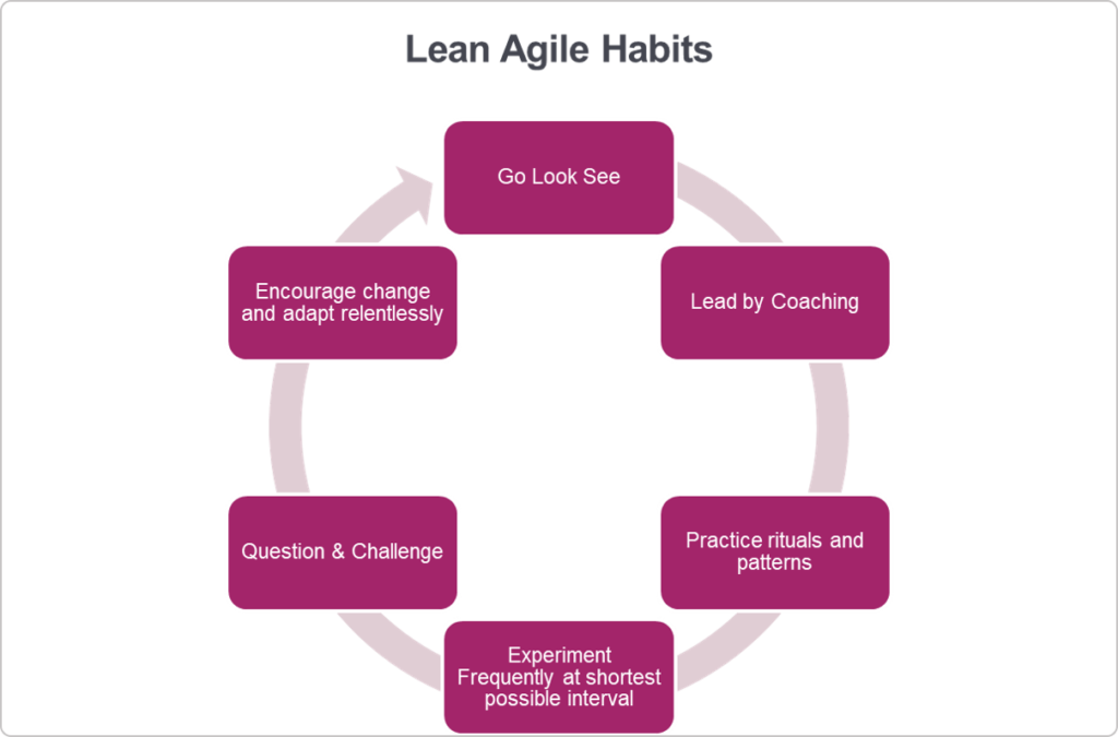 lean-agile habits